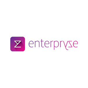 Enterpryze-Logo-300x300