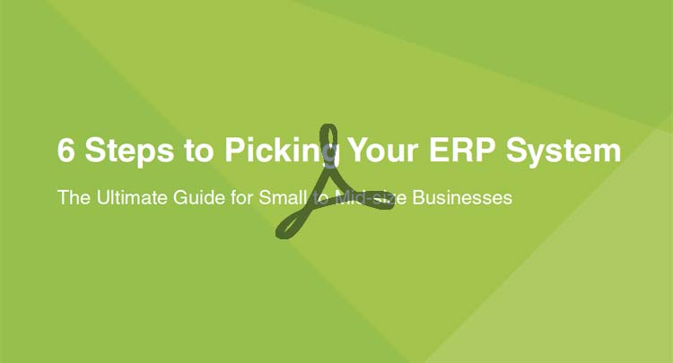 eBook: 6 Steps to Picking Your ERP System