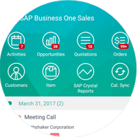 SAP Business One Mobile Sales Dashboard