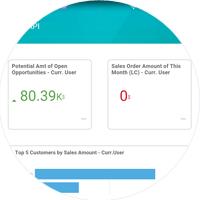 SAP Business One Mobile Sales KPI