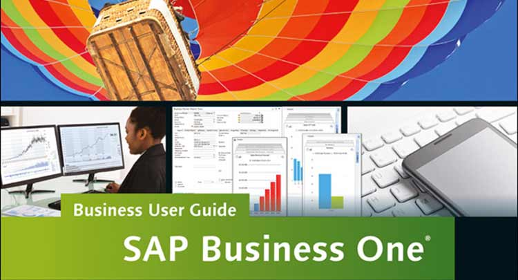 SAP Business One User Guide