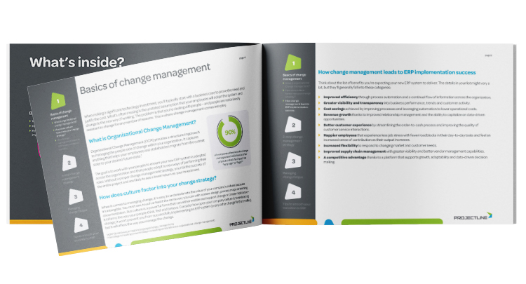 Download: ERP Implementation Change Management Guide for SMEs