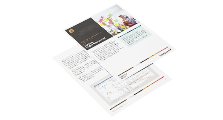 Data Sheet: NetSuite Projects