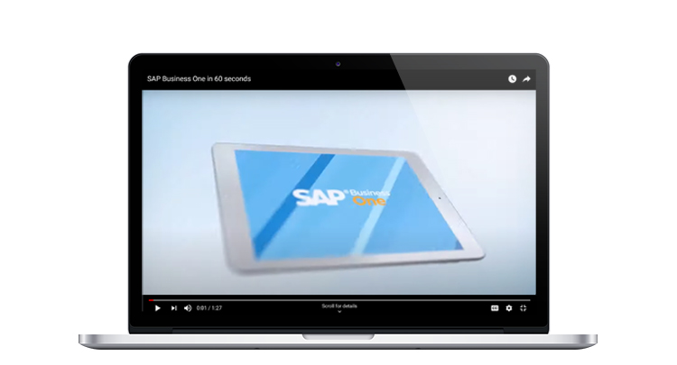 Video - SAP Business One 60 Second Demo