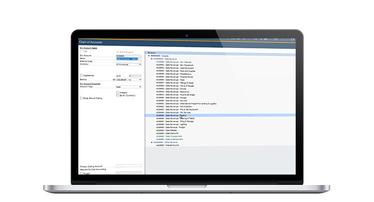 Video - SAP Business One Financials
