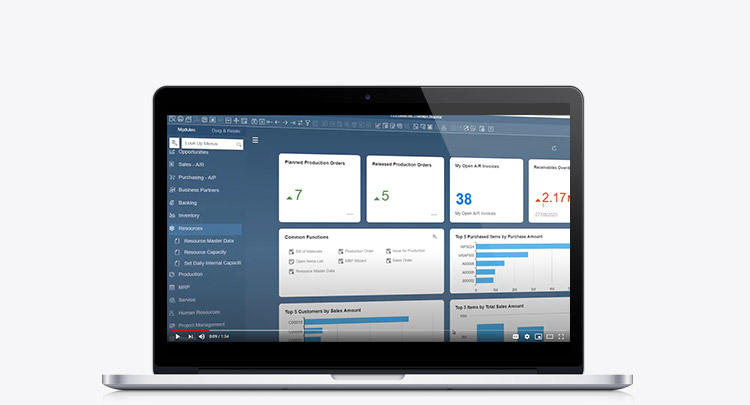 Video - SAP Business One Production Resource