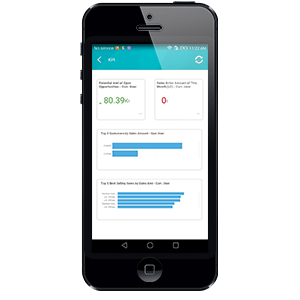 SAP Business One dashboard KPIs on mobile device